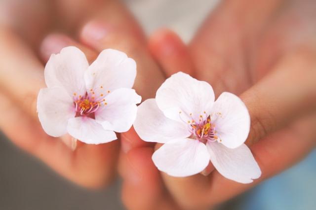 満開の桜をバックに♡お花見におすすめのファッションコーデ3選