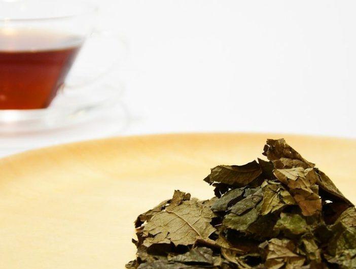 健康茶でホッと一息☆癒しにおすすめの健康茶まとめ♪
